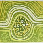 Seeds Landscape, by Lauren McKinley Renzetti
