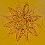 Sacred: Mandala Web by Lauren McKinley Renzetti