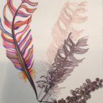 fantastical feather & shadows by lauren renzetti